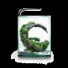 Kép 2/4 - Aquael Shrimp Smart szett 30 day and night - fekete nano akvárium szett