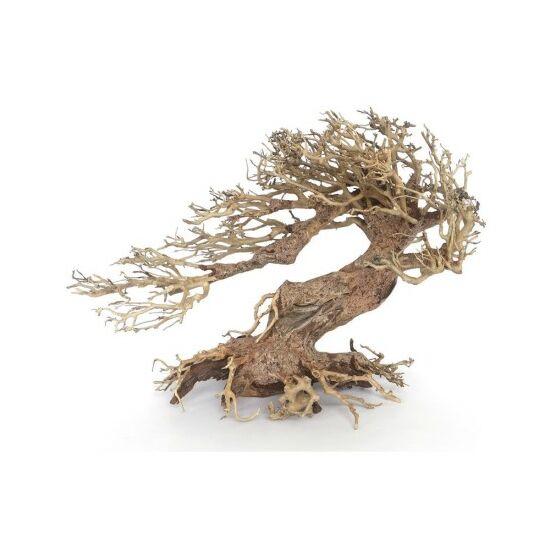 Amtra bonsai fa WOOD ORIENTAL WIND 3 M  30x13x23cm
